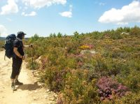 Camino de Santiago 2012
